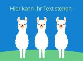 Drei Lamas